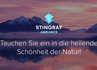 Stingray Ambiance 4K Ultra HD-Sender