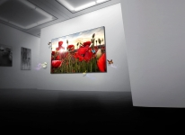 4K & OLED: LG Display investiert Milliarden in die OLED-Technik