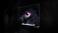 LG 55EG9109 OLED-TV im Media Markt-Angebot: Ein echtes Schnäppchen?!